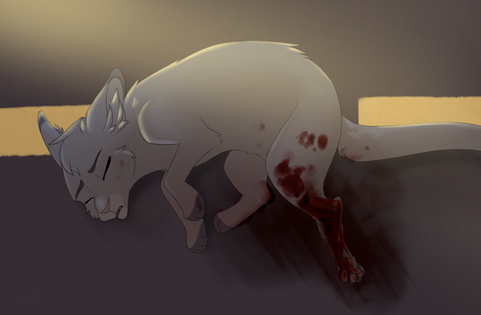 Cinderpaw's Accident -Redraw- by FrostedKat
