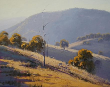 Sheep Grazing near Lithgow by artsaus