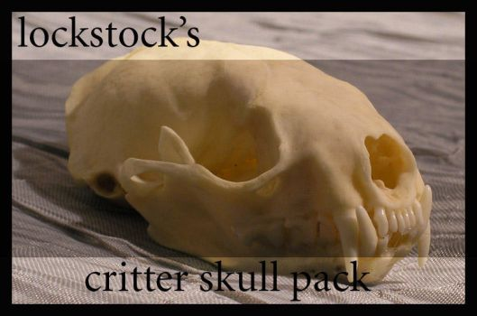 Critter Skull pack by lockstock
