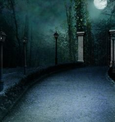 Premade Background 6 by StarsColdNight by StarsColdNight