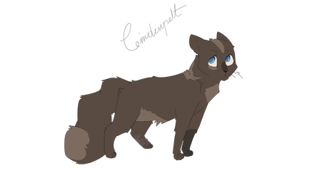 Cinderpelt by Gggggmicro2Icewind