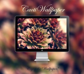 Cacti Wallpaper by NKspace
