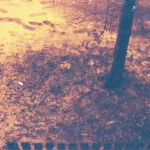 redscale winter by weltengang