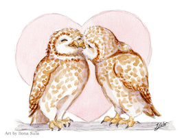 Kissing Owls by Ilona-S