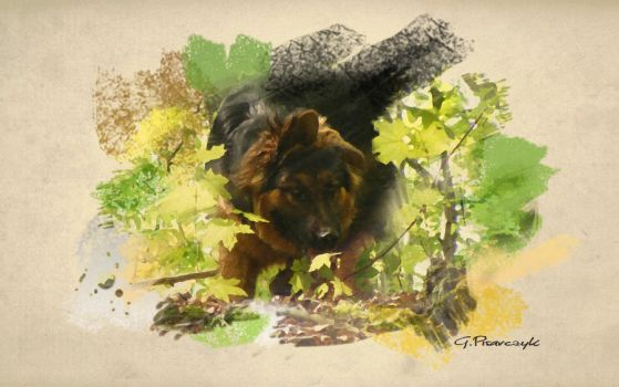 My Dog on canvas by KlechaW