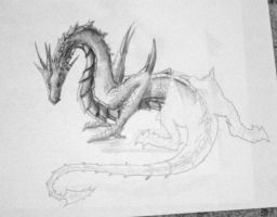 dragon scetch by drawing-on-wings