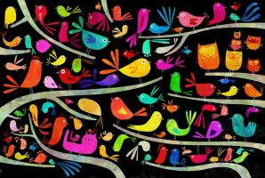Birds by nicolas-gouny-art
