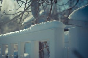 Gate to the Snowy Garden by Rawrahl