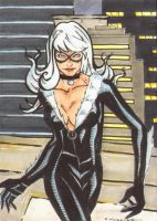 Black Cat PSC Commission by wheels9696