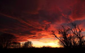 Fire Sky by scotto