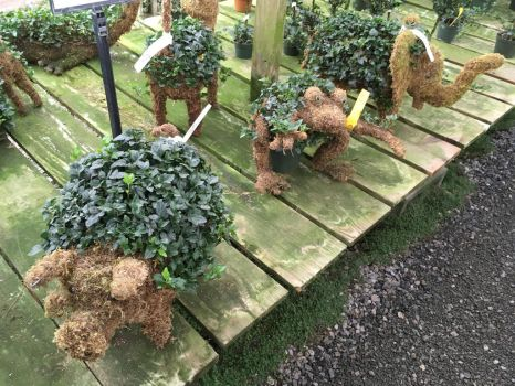 Mini Pig, Frog,  Elephant Topiaries by Colonel-Knight-Rider