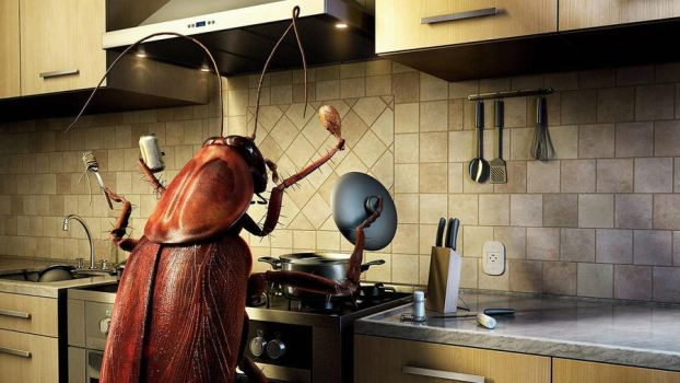 Bugs in The Kitchen by AllThatArt