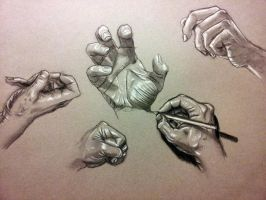 Anatomy Study Hands by RichardBlumenstein