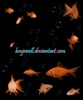 Goldfish Brushes by bmjewell-stock