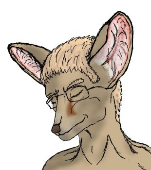 Series A - 1st of 9 'Fennec' by TermsOfService
