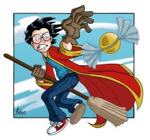 Harry and the Snitch by StudioBueno