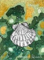 Scallop Shell ATC by TempestErika