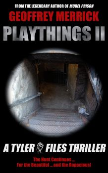 Playthings II Cover by geoffmerrick