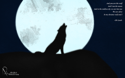 Wolf and I by AndreiAPM