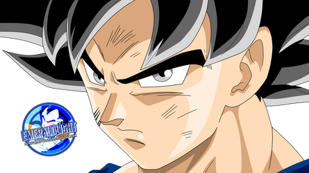 Goku ultra instinct dbs 110 by EmeraldLighting