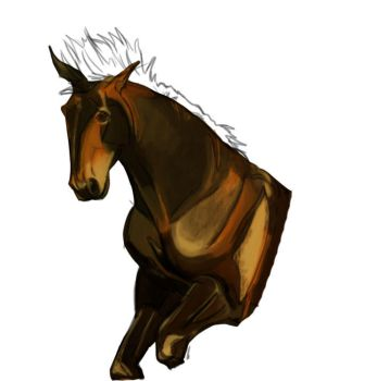 Horse sketch practice by Madkazer