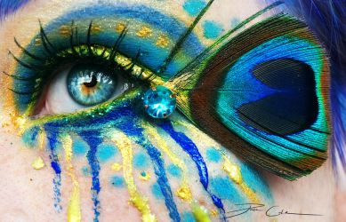 Crazy Peacock by PixieCold
