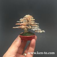 Yamadori style wire bonsai tree by Ken To by KenToArt