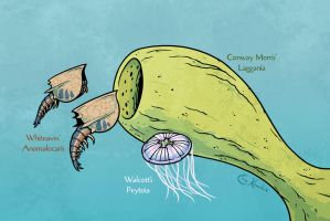 Science Ruined Anomalocaris! by Monster-Man-08