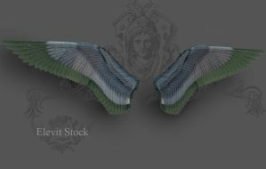 E-S Wings I by Elevit-Stock