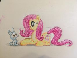 fluttershy and angel by BBQNinja501st