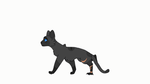 Cinderpelt walk cycle by Jaypants