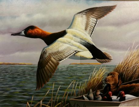 Canvasback duck and Chesapeake Retriever by pm3013