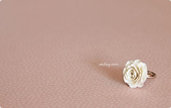 White rose on a silver band. by Aiclay
