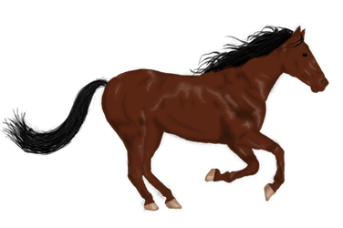 Horse by A-Brunette