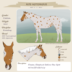 ROS Notorious by Kharress