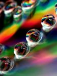 rainbow in a drop by tangleduptight
