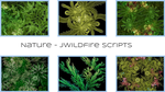 Nature Scripts - JWildfire by audiomonk