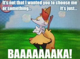 braixen in pokemon Omega Ruby and Alpha Sapphire by PainJimMoon123