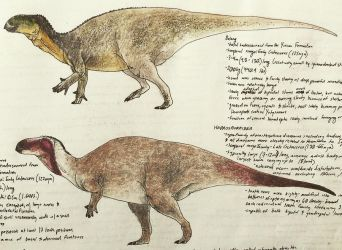 Jehol Hadrosauroids by PrehistoryByLiam