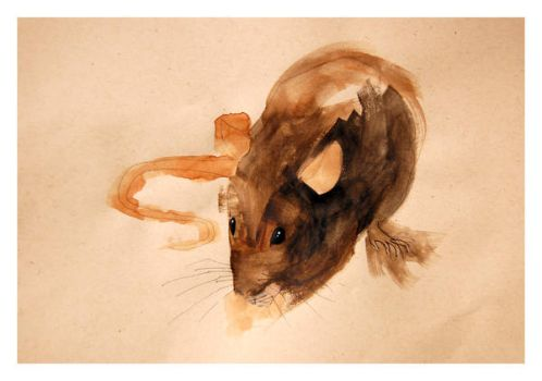 Rat_Black_2 by Duffzilla