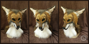 Stevo coyote head by Kay-Ra