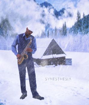 SYNESTHESIA by Ovatography