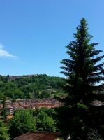 Skyscape and Pine tree by Gheldhon