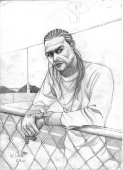 Sean Paul revisited by propatch