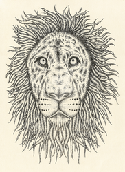Lion head design by avafury