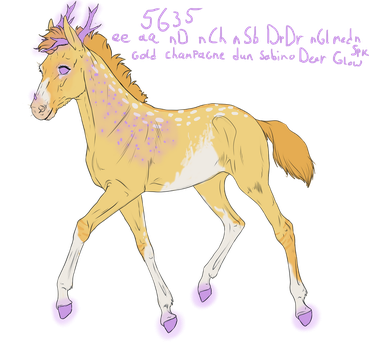 5635 Padro Foal Design for UnknownRidersStable by Fay-leigh