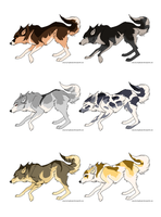 Wolf Adoptables :OPEN: by Whitelupine