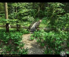 Four steps in the woods 01 by Fonpaolo