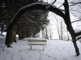 The Lonely Bench V by viviP