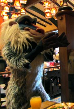 Rafiki at the Grand Californian by lanie100
